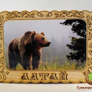 "Магнит фото кедровый ""Медведь 1"""