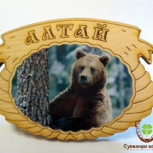 "Магнит фото кедровый ""Медведь 2"""