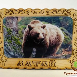 "Магнит фото кедровый ""Медведь 3"""