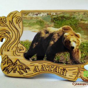 "Магнит фото кедровый ""Медведь 6"""