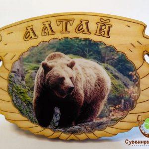 "Магнит фото кедровый ""Медведь 7"""