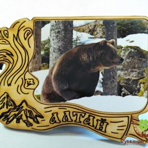"Магнит фото кедровый ""Медведь 8"""