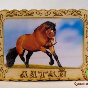 """Магнит фото кедровый """"Лошадь 1"""""""