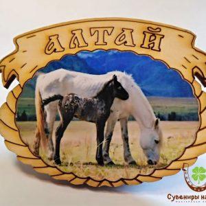 """Магнит фото кедровый """"Лошадь с жеребенком 1"""""""