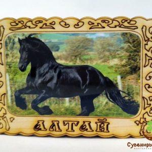 """Магнит фото кедровый """"Черный конь"""""""
