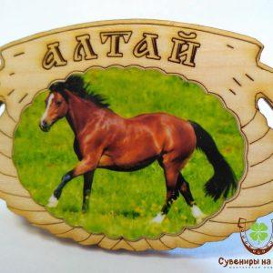"""Магнит фото кедровый """"Лошадь 2"""""""