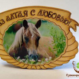 """Магнит фото кедровый """"Лошадь 3"""""""
