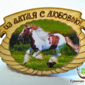 """Магнит фото кедровый """"Лошадь 4"""""""